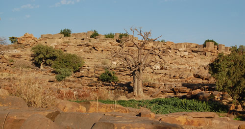 Biry er omgivet af baobab og andre store gamle træer